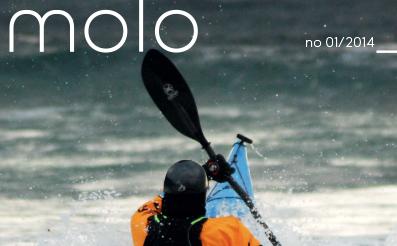 cover_molo_2014